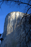 Early Light On El Capitan