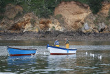 24 Brest 2008 1T1P0204 DxO web.jpg