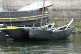 1998 Brest 2008 1T1P1577 DxO web.jpg