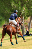 North Scottsdale Polo Club