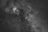 Cygnus with NGC 7000