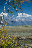 WM---2008-09-18--0483--Yellowstone---Alain-Trinckvel-3.jpg