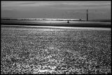 Sea, Sand and Sun : Trouville (France) - 2006 Black & White