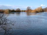 River Clyde at Carbarns Haugh