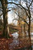 The Chestnut Walk, Baron's Haugh
