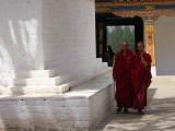 Bhuddist monks, Punakha Dzong