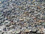 Clear water in Lake Wakatipu