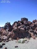 Teide's Park