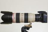 Canon 70-200 f/2.8 IS USM + Kenko 2X on XSi