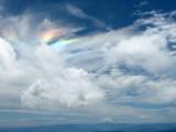 Mt. Adams Wilderness - Skamania COHP