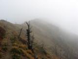 Gifford Pinchot N.F. - Goat Mountain 5407