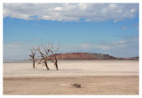 Salt Flats and Red Hill