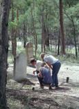 Old graves at Joadja - 2