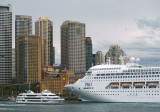 Circular Quay with large visitor