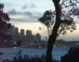 Evening on Sydney Harbour