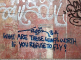 Refuse to fly