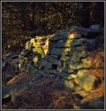 Yellow-Stone-Wall