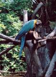 05_bird.JPG