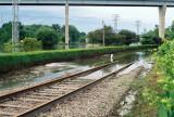 16_waterfront_rails.JPG