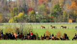 Red Mountain Fox Hunt