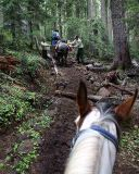 Trail work from the saddle   (Near Jug Lake)