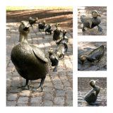 Make Way for Ducklings, Public Garden (Collage)
