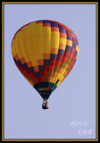 PRO FOOTBALL HALL OF FAME HOT AIR BALLOON FESTIVAL-5748.jpg