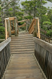 I went to Bass Harbor lighthouse. This trip, I found the steps going down to the rocks where everyone takes photos.