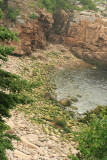 I was bound and determined to find Boulder Beach in Acadia.  I did, but it was not as special as I had thought...