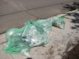 The cleanup - 5 bags of ruined grass and soil