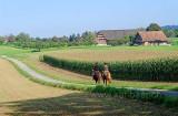 Knonau (83984)