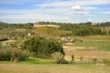 Toscana (91591)