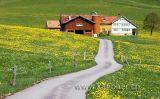Im Appenzellerland (2010)