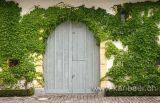 Tor / Door (3972)