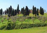 Toscana (04401)