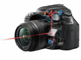 Sony High Speed Live View