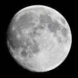 Halloween Moon (1396)