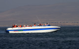 Trip to Paracas - Ballestas Islands
