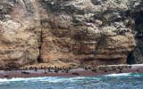 Maternity beach, Ballestas Islands