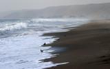 Pacific ocean coast, Chincha