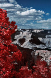 Grand Canyon in Infrared