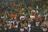 ahs crowd