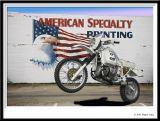 MuralFlagEagleBMW.jpg