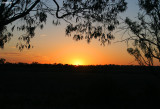 0513- sunrise at kulcurna