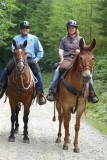 DNR Budget manager Bob Van Schoorl following his favorite mule