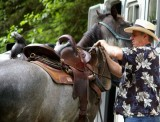Rollin Binion saddling up a VIP horse