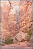 _ADR6693 ls canyon wf.jpg