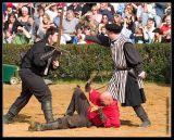 CRW_0037 duel wf.jpg