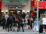 New York City Horse Mounted Police