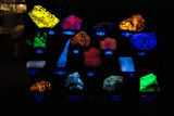 Gems and Minerals under fluorescent light